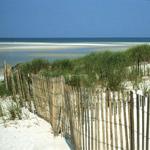 alabama-point-beach